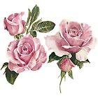 Roses watercolour illustration by Paris Lomé by Paris Lomé