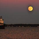 Super-moon / Beaver-moon  by Poete100