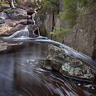Stewart Falls by Travis Easton