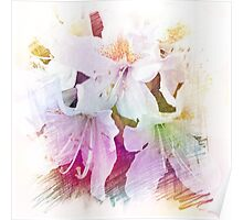Beautiful color pencil sketch white azalea flowers. floral photo art. Poster