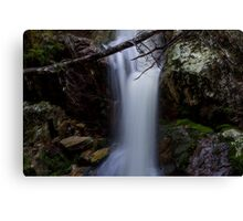 Crater Falls, Cradle Mountain National Park, Tasmania Canvas Print