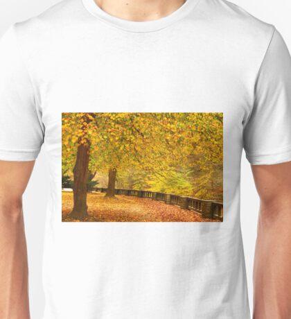 Shrouded in Gold ©  Unisex T-Shirt