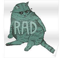rad cat Poster