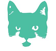 Cat Silhouette in Teal Photographic Print