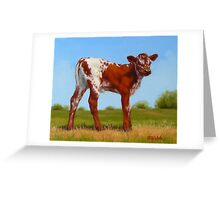 Texas Longhorn New Calf Greeting Card