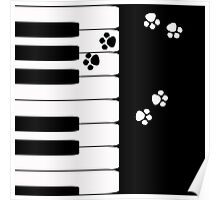 Black and white pattern . Piano .  Poster