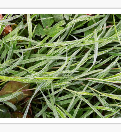 Frosted grass Sticker
