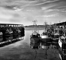 North Shields Fish Quay by Violaman