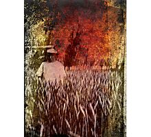 Wheat Field at sunset Vintage Photography Photographic Print