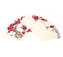 Plum Blossom In Fan Photographic Print