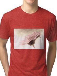 Fading Inspiration Tri-blend T-Shirt