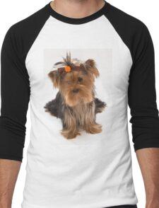 Sweet Yorkie Puppy Men's Baseball ¾ T-Shirt