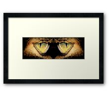 Cat's Eyes Framed Print