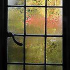 Autumn window. by Paul Pasco