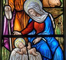 The Birth  by Darren Wilkes