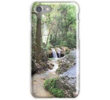 A Stream of Beauty iPhone Case/Skin