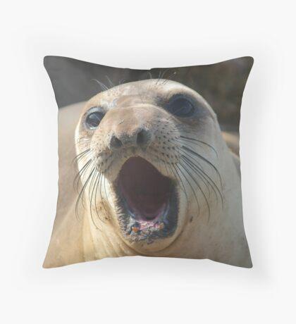 AUDIBLE Throw Pillow
