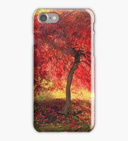 Little Red Tree iPhone Case/Skin
