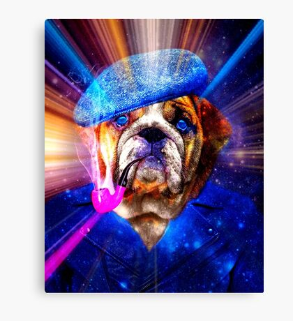 Funny Fellow Canvas Print