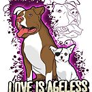 Adopt a Senior Pet, Love is Ageless by Beverly Lussier
