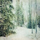 Winter Woods by Priska Wettstein