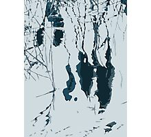 Reeds Reflected Photographic Print