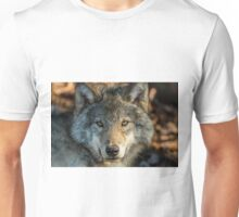 Timber Wolf - Looking at you. Unisex T-Shirt