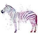 Watercolor Zebra by Thubakabra