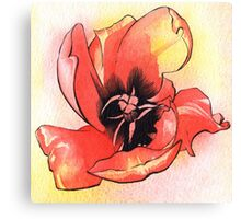 Bursting Red Tulip - Watercolour & Ink Canvas Print