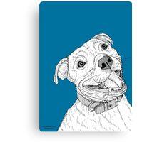Staffordshire Bull Terrier Portrait Canvas Print