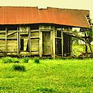 """""""This Old House""""... prints and products by © Bob Hall"""