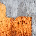 Plywood Abstract by Chet  King
