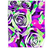 pink purple and green roses  Poster