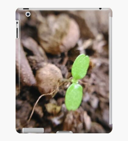 two leaves iPad Case/Skin