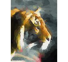 Big Cat Photographic Print