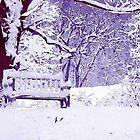 Snow Scenes of Winter by perkinsdesigns
