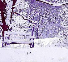 Snow Scenes of Winter by Phil Perkins