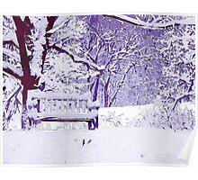 Snow Scenes of Winter Poster