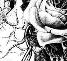 Floral Anatomical Heart Sticker