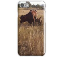 Calf and Mother iPhone Case/Skin
