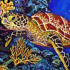 Sea Turtle by Rachelle Dyer