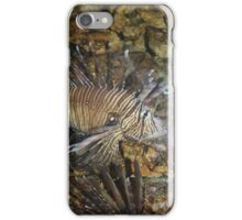 Lion Fish iPhone Case/Skin