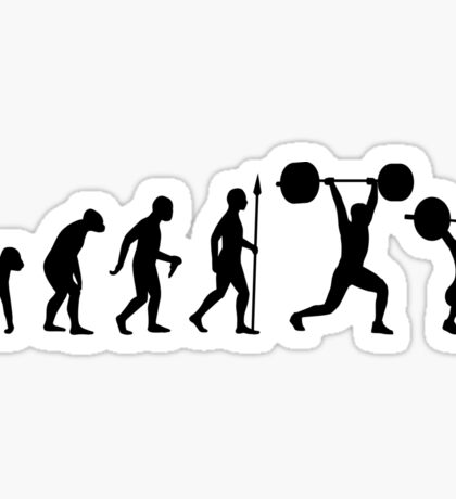 Evolution - Olympic Lifting Sticker