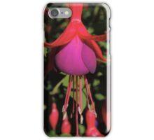 Fuchsia Explosion iPhone Case/Skin
