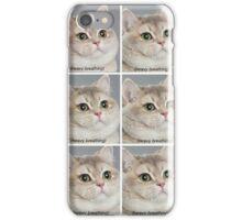 Cat Meme iPhone Case/Skin