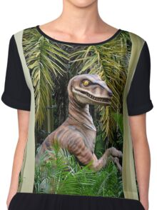 Raptor Encounter Chiffon Top