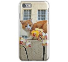 Cat Behind the Flowers iPhone Case/Skin