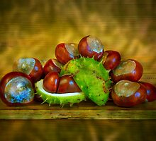 Conker Season by Dave Hare