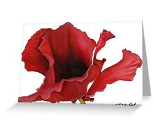 Poppy By Dianna Derhak Greeting Card