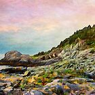 Gull Rock, Monhegan Island, Maine by Dave  Higgins
